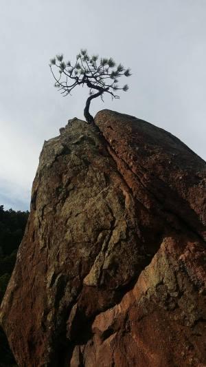 Day off, Boulder